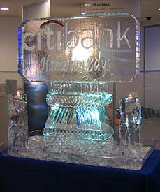 Citibank Logo created by Ice Miracles Long Island, New York, LI, NY